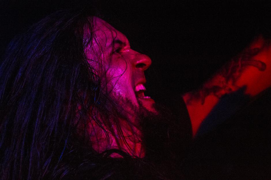 <div class='info-header'>Photographer</div> <a href='http://www.dmcdonnellphotography.com/' target='_blank'>Damian McDonnell</a>
